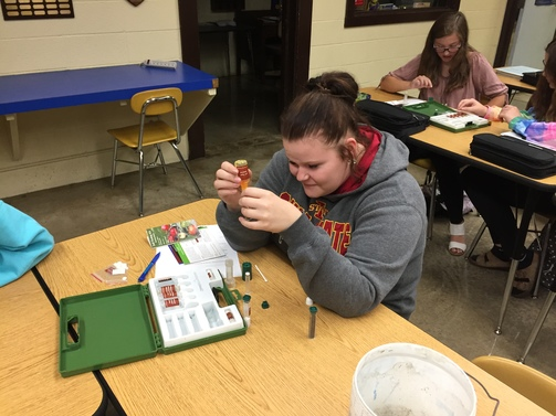 Testing Soil for PH in Plant Science Class.